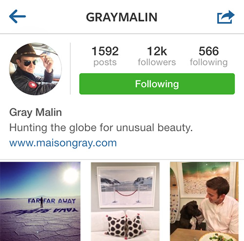InstagramFaves_GrayMalin